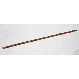 Rare rosewood walking stick from 19th century.